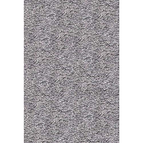 OCM All Purpose 10'x12' Folding Carpet in Grey, Perfect as Area Rug for College Dorm Rooms, Bedrooms and Bathrooms, No-Skid Backing, Nylon Pile for a Soft Plush Thick Feel