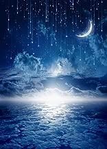 night sky photo backdrop