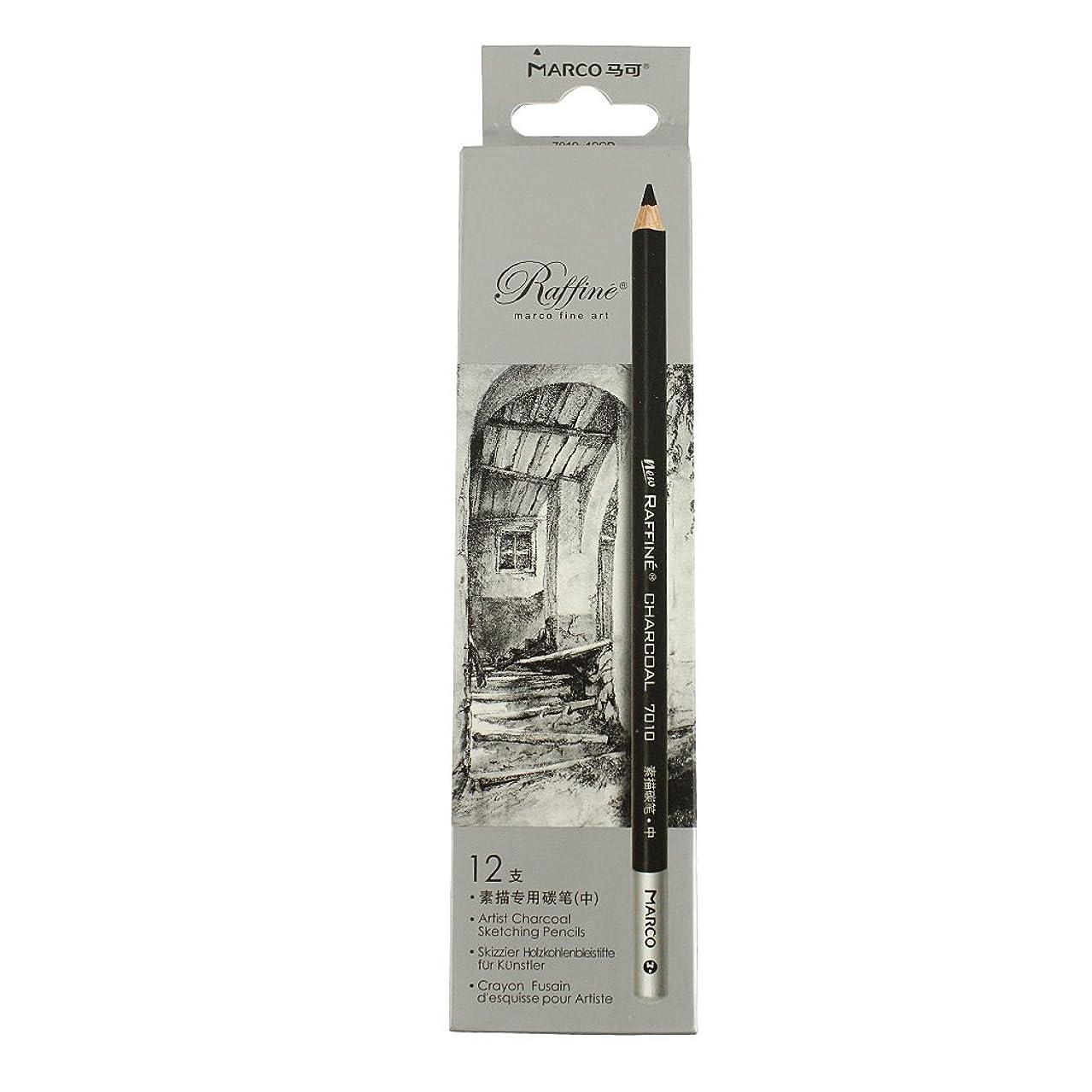 Sipliv Sketch Pencil Charcoal Sketch Pencil Set, Pencil Core Hardness Soft - 12 pcs