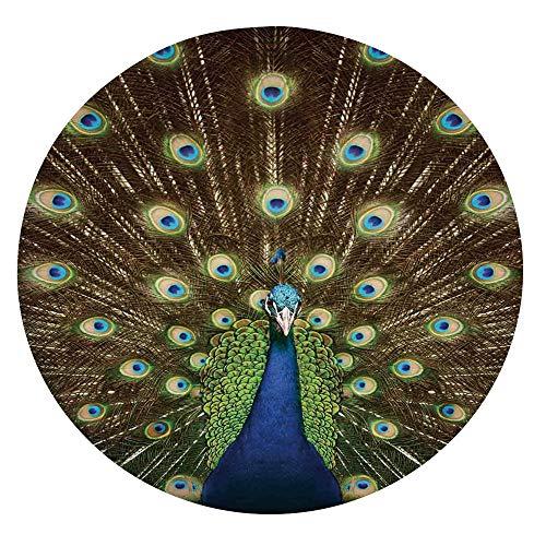 Mantel ajustable de poliéster con bordes elásticos, retrato de pavo real con plumas, colores vibrantes, pájaros, verano, jardín, se adapta a mesas redondas de 36 a 40 pulgadas, protección para tu mesa