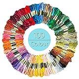 WolinTek set de 100 Madejas de Hilos Madejas Hilos de Bordar algodón poliéster para Cross Stitch Bordado Hilos Punto de Cruz manualidades
