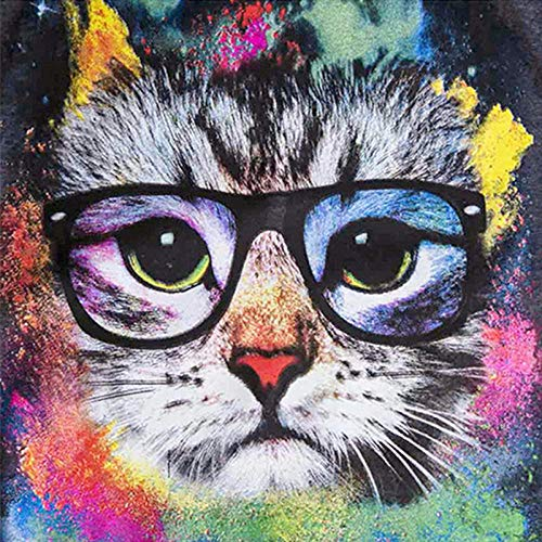 5D Diy Pintura diamante Gato animal con gafas Diamond Painting Rhinestone Bordado de Punto de Cruz Artes Manualidades Lienzo Pared Decoración 30x40cm(Sin marco)