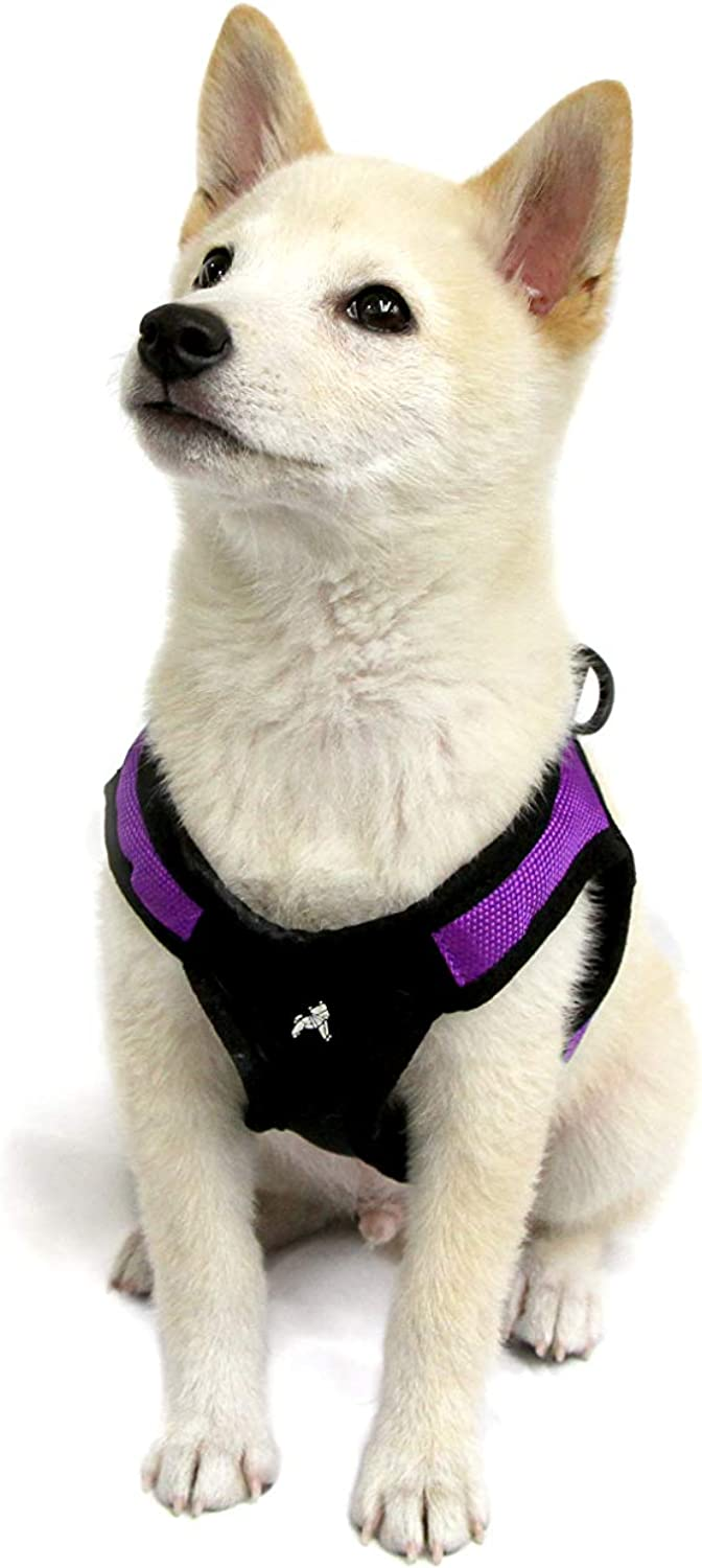 Gooby  Escape Free Easy Fit Harness, Small Dog Stepin Harness for Dogs That Like to Escape Their Harness, Purple, XSmall