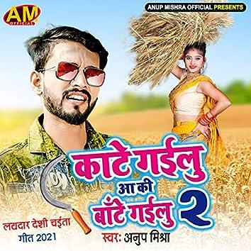 Kate Gailu Aa Ki Bate Gailu 2 (Bhojpuri Song)