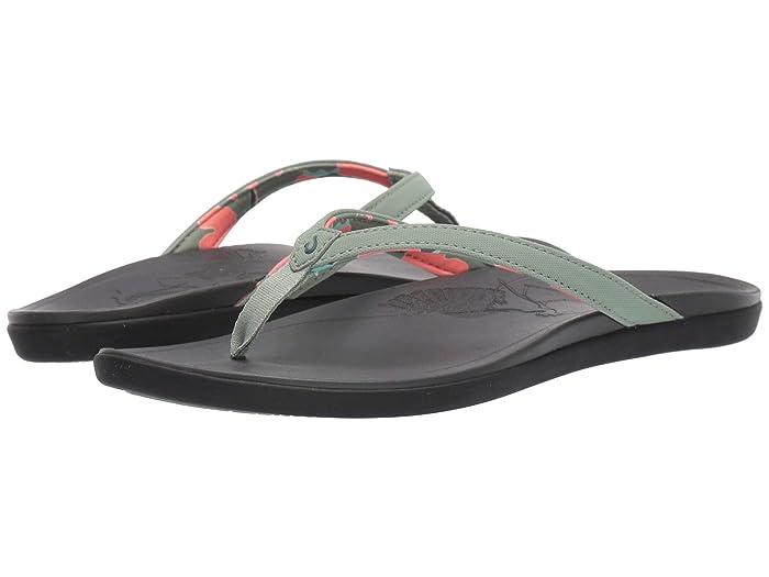 Ho'opio Ae'o  Shoes (Green Bay/Dark Shadow) Women's Shoes