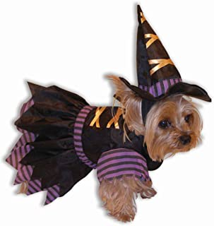Witch Doggie Pet Costume - XS/Small
