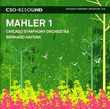 Mahler, G.: Symphony No. 1