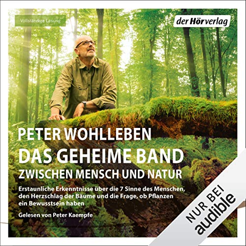 Das geheime Band cover art