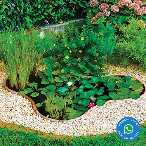 Giardini D'Acqua Art. 522 Laghetto