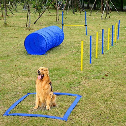 Mascarello Pet Agility Training Set Play Kit Dogs Hound Set Pole Tunnel Obedience Equipment