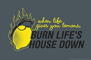 When Life Gives You Lemons Burn Lifes House Down Video Game Poster 12x18