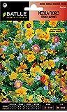 Semillas de Flores - Mezcla de Flores césped japonés - Batlle