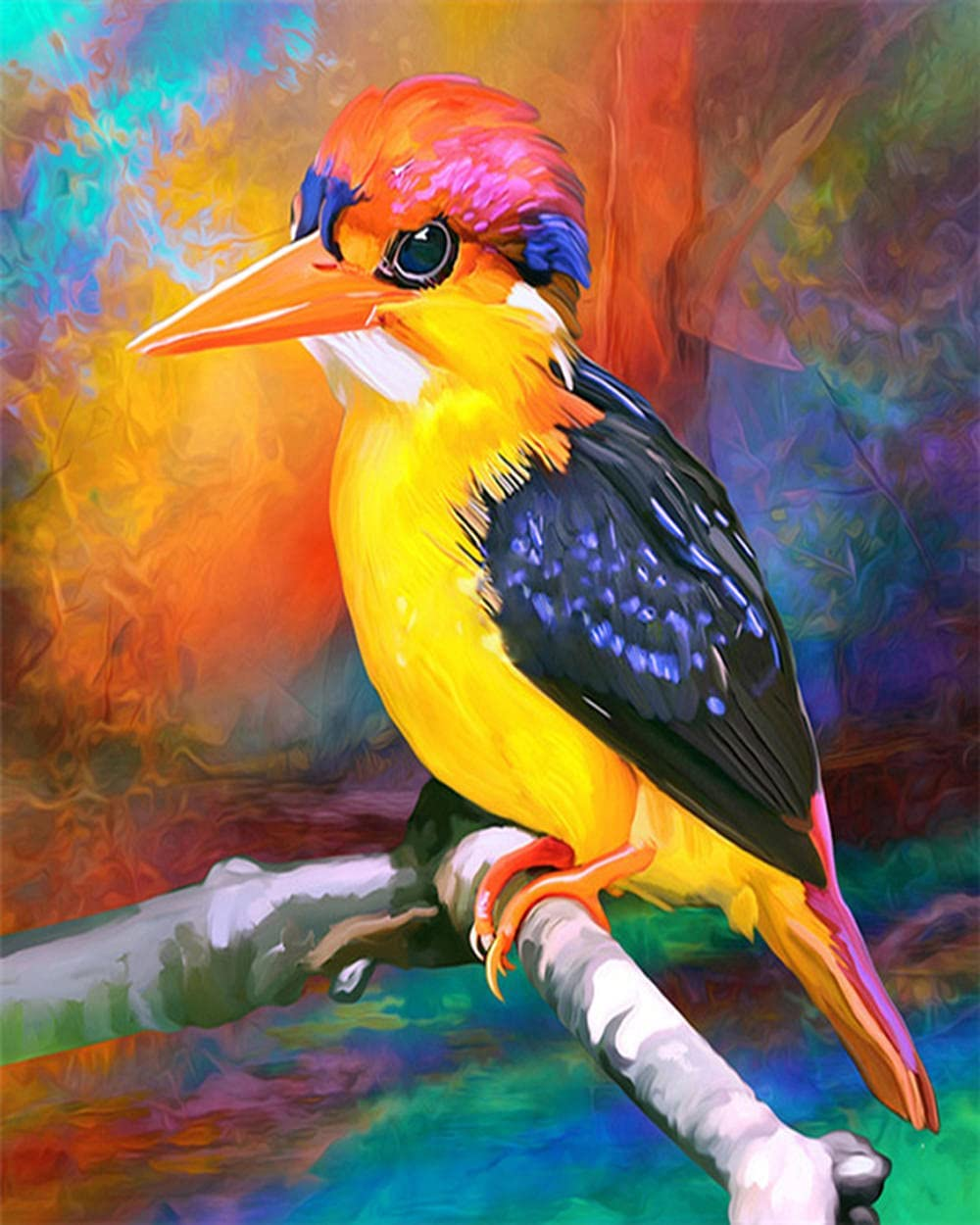 Price reduction HRKDHBS DIY Oil Paint by Number Bird Kit NEW before selling Animal Fr 40X50Cm with