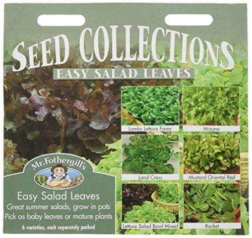 Mr. Fothergill's 10480 Lot de 6 sachets de graines à semer de salades
