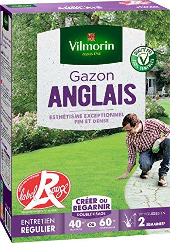 Vilmorin 4462714 Gazon Anglais, Vert, 1 kg
