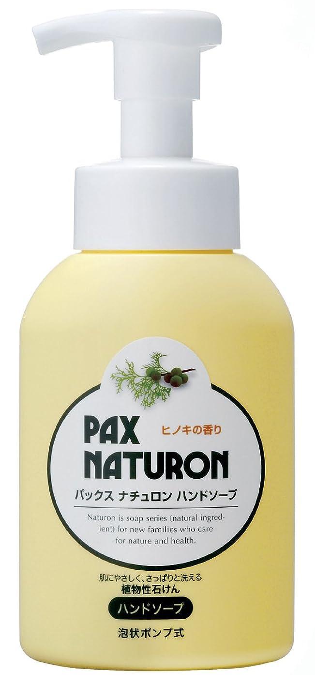 水分鎮痛剤はげパックスナチュロン ハンドソープ 260ml