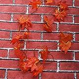 WINOMO 2 Stücke Herbstgirlande mit Ahorn Blättern Tischdeko künstlich Fensterdeko 2.4M - 5