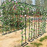Arco de jardín, pérgola de Metal al Aire Libre para Plantas trepadoras, Rosas, Enredaderas, césped de jardín, Patio Trasero, Fiesta Nupcial, Negro/Blanco/Verde