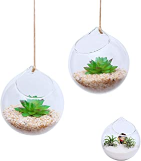 Ivolador Set of 2 Pcs 4.7 Inches Hanging Planter Glass Terrarium Container Air Plant Holder Succulents Globe Shape Home Garden Decor