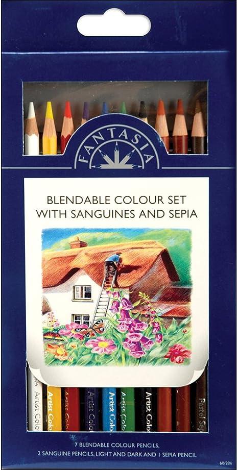 Set of 10 Colored Pencils Art Supplies Destash Artists Pencils Blendable Colour Pencil Set by Fantasia