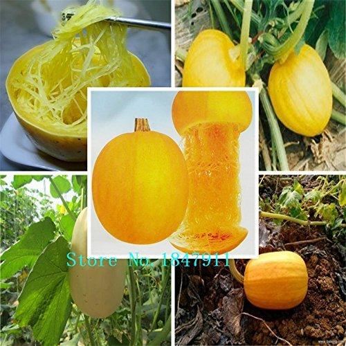 Grande vente Paquet d'origine 20 graines / Pack, d'or en agitant des graines de melon, le melon Watkins remuer Balcon pot fruits et légumes