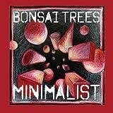 Minimalist by Bonsai Trees (2013-05-04)