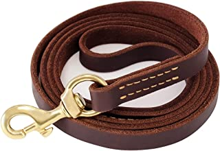Best leather dog leash Reviews