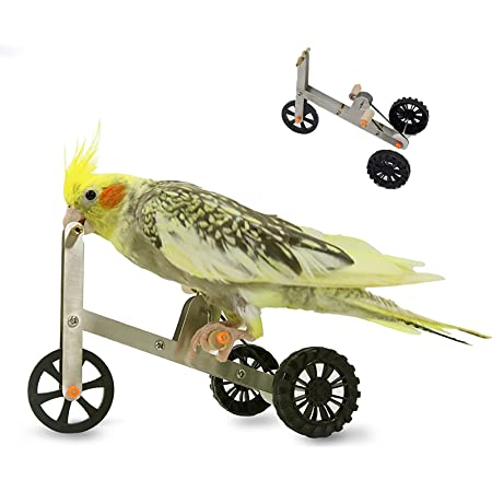 Bird Toys Parrot Bicycle Training Toy, Bird Tabletop Trick Toy Interactive Educational Foot Talon Toys for Medium Large Birds, Funny Parrot IQ Training Supplies for Macaw Conure Cockatiel Parakeet