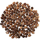 Cooraby 130 Pieces Micro-Mini Natural Pine Cones Christmas Natural Pine Cones Ornaments for Home Decoration, Fall and Christmas