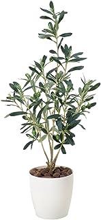 光触媒 人工観葉植物 光の楽園 オリーブ 379A60
