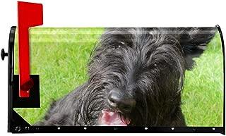 SKGEOXf Scottish Cute Scottish Terrier Dog BreedBeautiful Magnetic Mailbox Cover Garden Decoration - 21