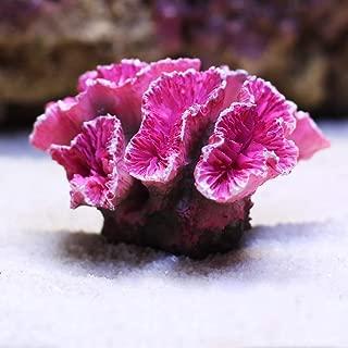 Danmu 1pc of Polyresin Coral Reef Ornament 2.75