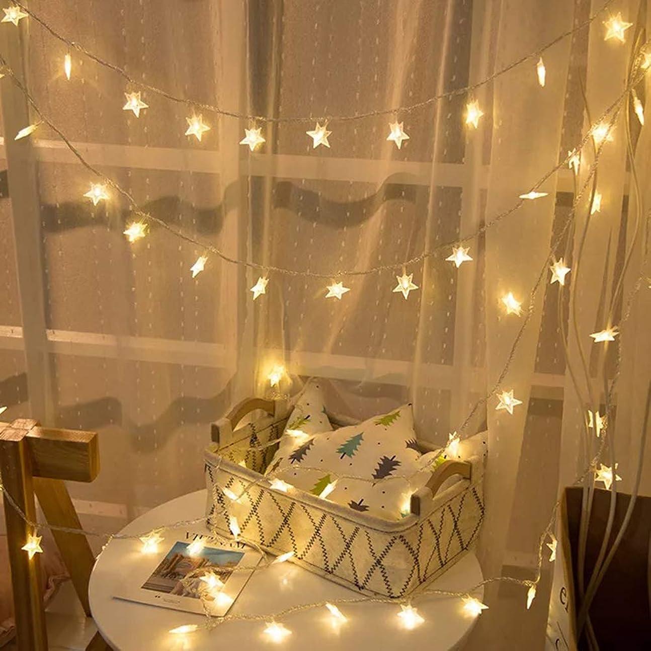 昆虫ムス拮抗クリスマス ledスターライト 飾り ライト6m 40球 LED ストリング ライト クリスマス ツリー 飾り物 高輝度 パーティー 結婚式 誕生日 記念日 デコレーション