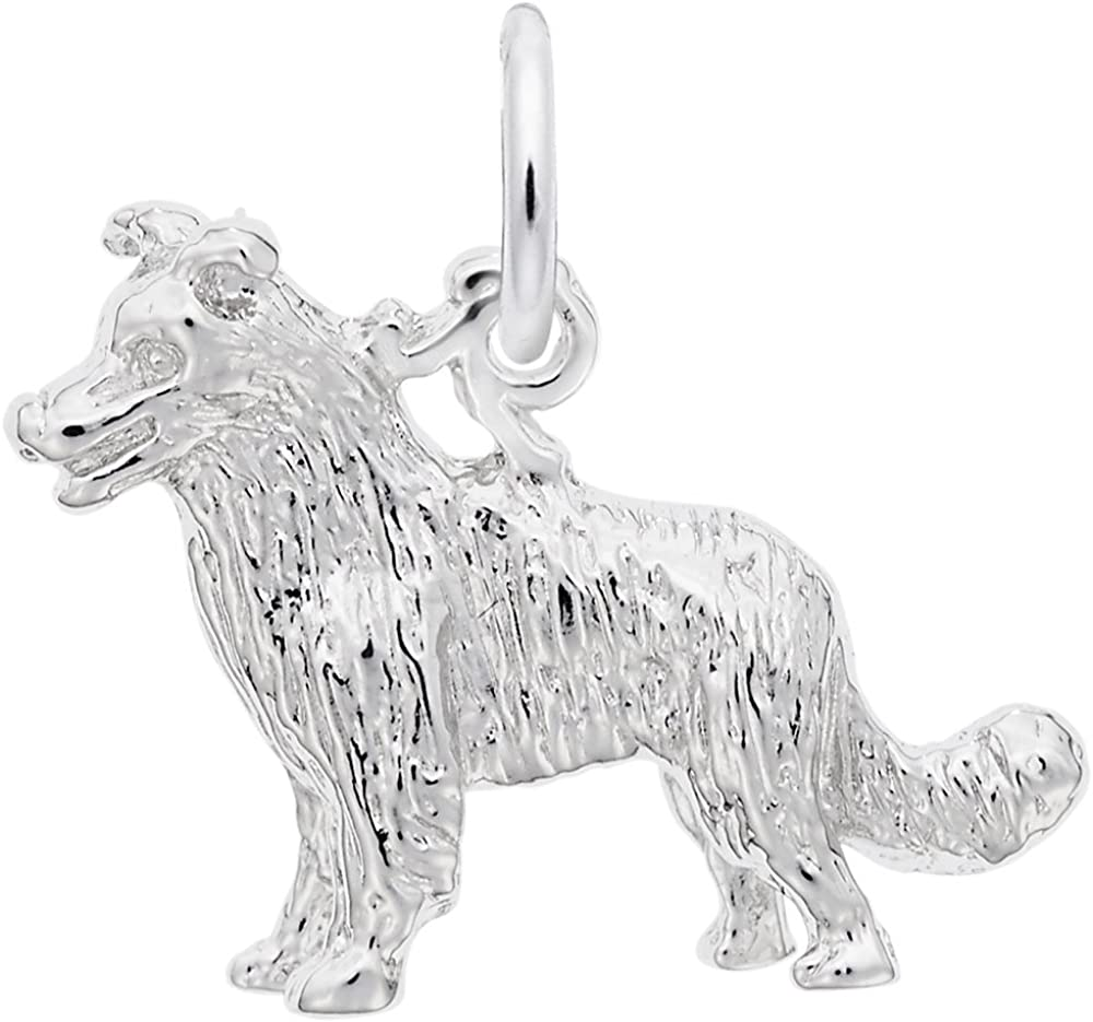 Border Collie Dog Charm Charms Free Shipping Cheap Bargain Gift and Necklaces for 70% OFF Outlet Bracelets
