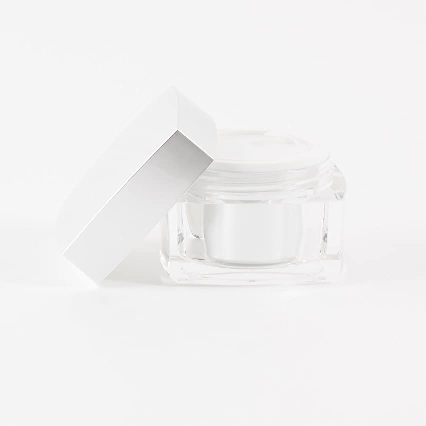 ロバスクラップブック孤独Verve Acrylic Jar Silver 50ml x 10
