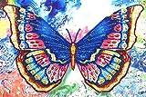 Kit de Pintura de Diamante Especial 5D Mariposa Cuadros Diamantes Punto de Cruz Pintura al por Numeros Mosaicos Manualidades con Diamantes de Imitación Salon Pared 35 x 25 cm
