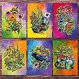 Postkarten - Set Kräuterhexe / 6 Karten mit Motiven: Heilkräuter, Wildkräuter und Tiere - toll als Geschenk