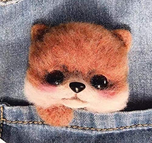 DIY Wool Needle Felting Kit with Needle Felting Tools,Video Tutorial,Easy for Beginners,10 Different Kinds,Felted Dog Puppy Brooch, Felted Animal (Pomeranian)