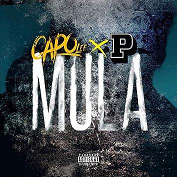 Mula (feat. P Money)