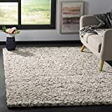 Safavieh Hudson Shag Collection SGH330A 2-inch Thick Area Rug, 6' x 9', Ivory/Grey