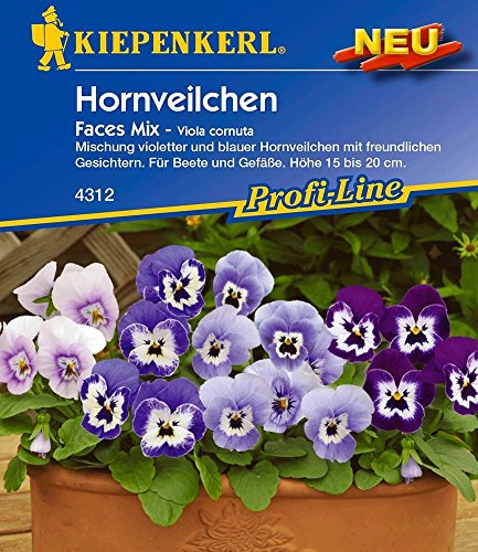 Kiepenkerl Hornveilchen Faces Mix 1 Portion Viola cornuta