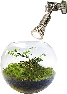 LED PlantLight 5W 拡散光 クリップタイプ 植物育成用 白色電球 E17 観葉植物 アクアリウム テラリウム 植物ライト
