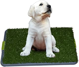 Sonnyridge Easy Dog Potty Training - Made with Artificial Grass - 3 Layered System - Antimicrobial Mat, Absorbs Odors and Hinders Bacterial Growth - Great for Puppies and Small to Medium Dogs