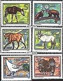Prophila Collection DDR 2522-2527 (kompl.Ausgabe) 1980 Bedrohte Tiere (Briefmarken für Sammler) Säuger Sonstige