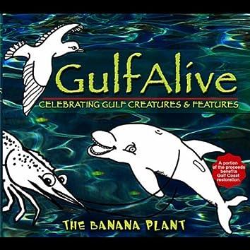 Gulf Alive