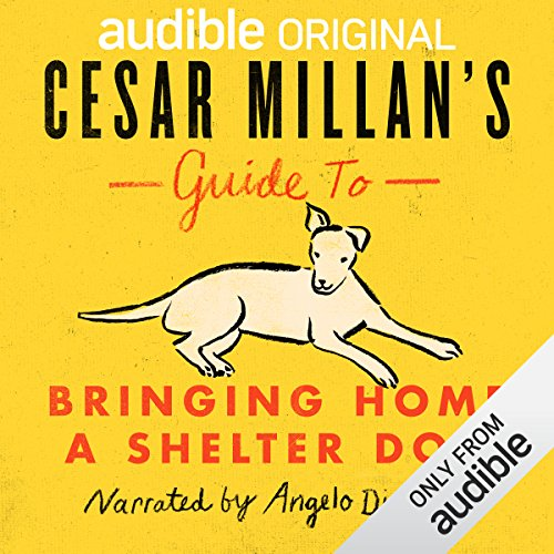 Cesar Millan's Guide to Bringing Home a Shelter Dog Titelbild