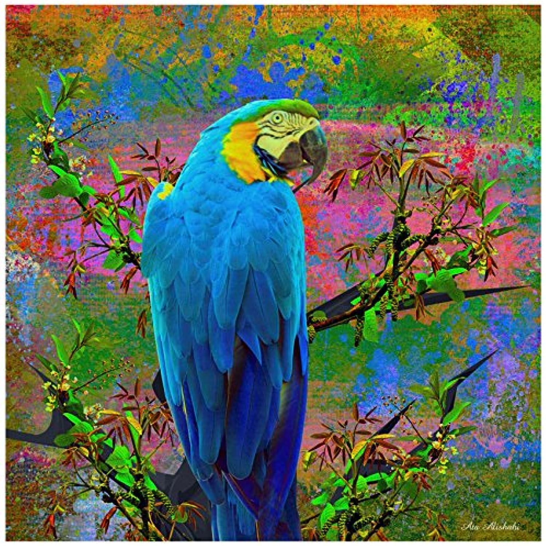 Trademark Fine Art Ata Alishahi Bird Collection 24 Wall Décor, 14 x 14