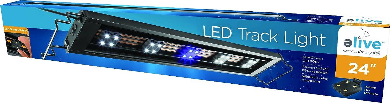 Elive L.E.D. Track Light, 5 Pod, 24 Inch