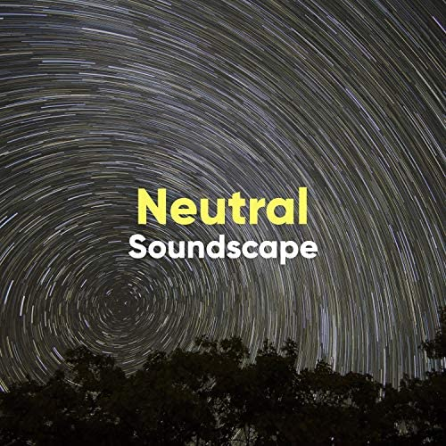 Raining Ambience & Nature Sounds for Sleep and Relaxation