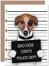 Wee Blue Coo Funny Jack Russell Bad Dog Mug Shot Birthday Sealed Greeting Card Plus Envelope Blank Inside